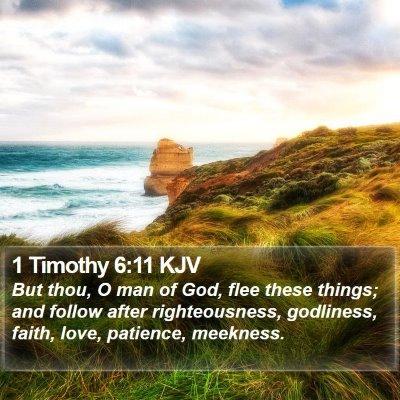 1 Timothy 6:11 KJV Bible Verse Image