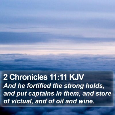 2 Chronicles 11:11 KJV Bible Verse Image