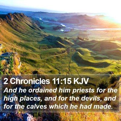 2 Chronicles 11:15 KJV Bible Verse Image