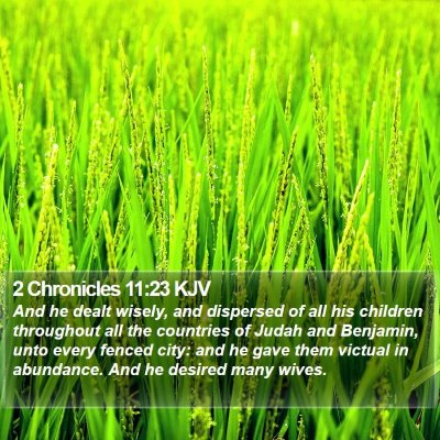 2 Chronicles 11:23 KJV Bible Verse Image