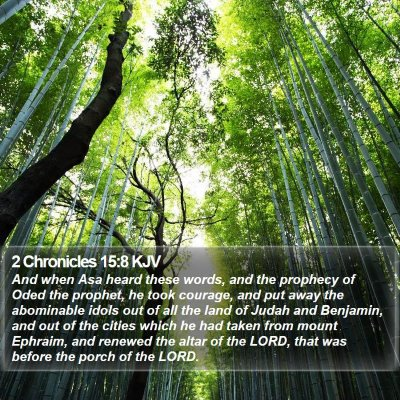 2 Chronicles 15:8 KJV Bible Verse Image