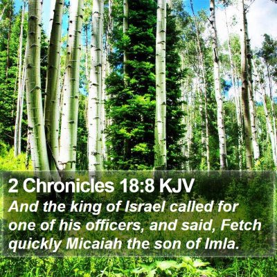 2 Chronicles 18:8 KJV Bible Verse Image