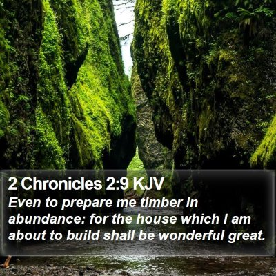 2 Chronicles 2:9 KJV Bible Verse Image