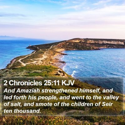 2 Chronicles 25:11 KJV Bible Verse Image