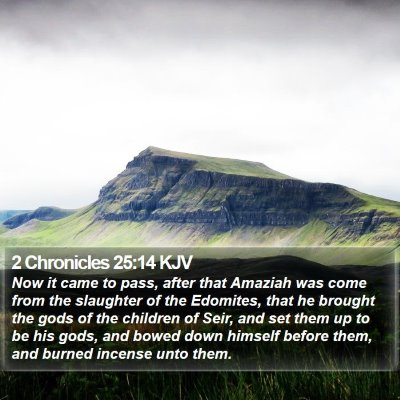 2 Chronicles 25:14 KJV Bible Verse Image
