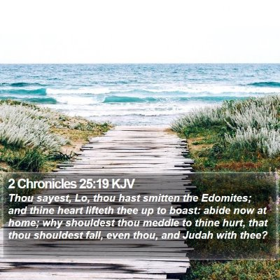 2 Chronicles 25:19 KJV Bible Verse Image