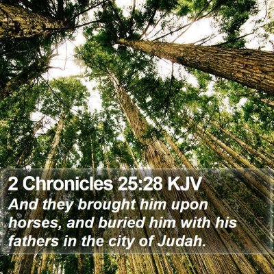 2 Chronicles 25:28 KJV Bible Verse Image