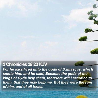 2 Chronicles 28:23 KJV Bible Verse Image