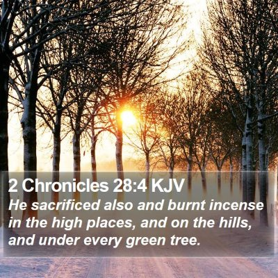 2 Chronicles 28:4 KJV Bible Verse Image