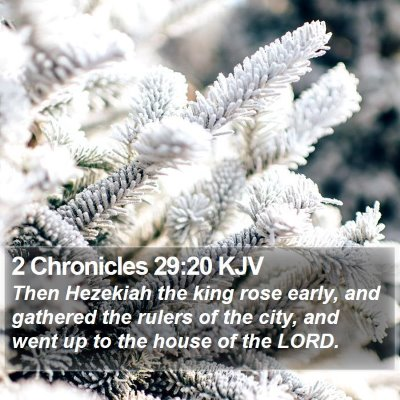 2 Chronicles 29:20 KJV Bible Verse Image