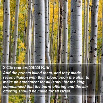 2 Chronicles 29:24 KJV Bible Verse Image