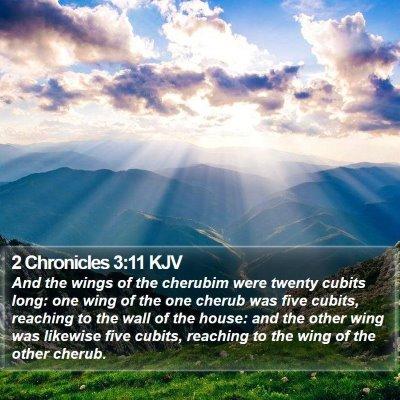 2 Chronicles 3:11 KJV Bible Verse Image