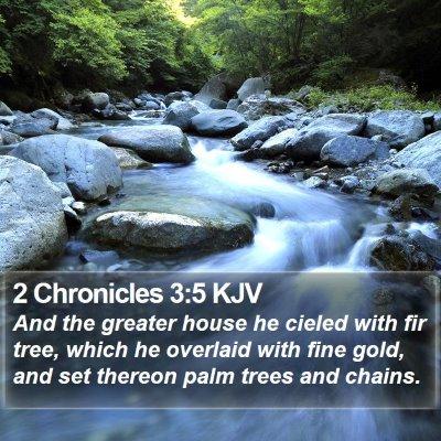 2 Chronicles 3:5 KJV Bible Verse Image
