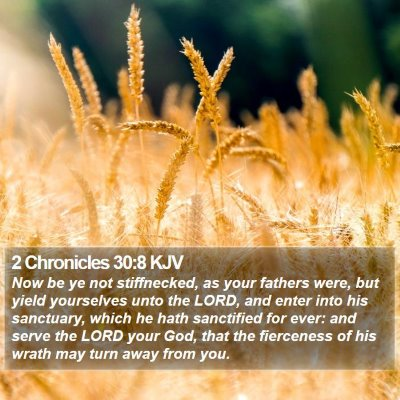 2 Chronicles 30:8 KJV Bible Verse Image