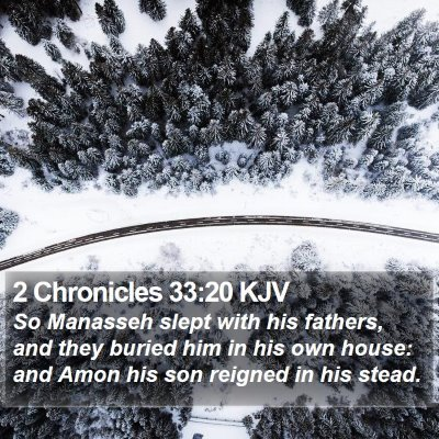 2 Chronicles 33:20 KJV Bible Verse Image