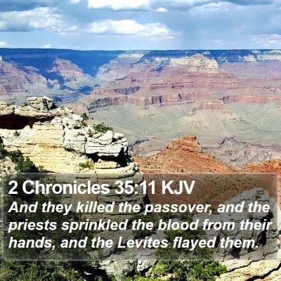 2 Chronicles 35:11 KJV Bible Verse Image