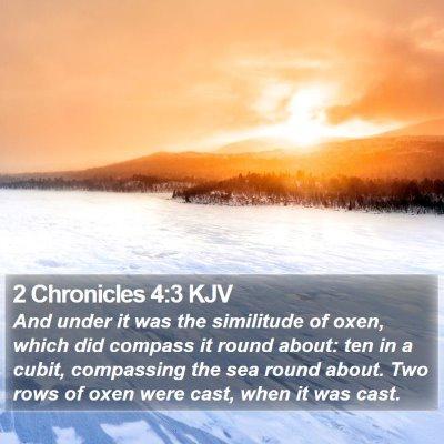 2 Chronicles 4:3 KJV Bible Verse Image
