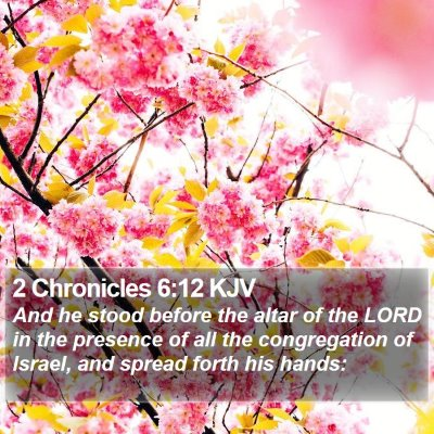 2 Chronicles 6:12 KJV Bible Verse Image