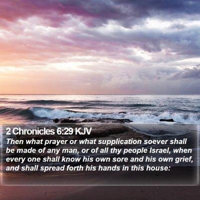 2 Chronicles 6:29 KJV Bible Verse Image