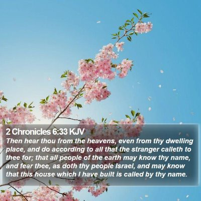 2 Chronicles 6:33 KJV Bible Verse Image