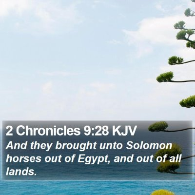 2 Chronicles 9:28 KJV Bible Verse Image