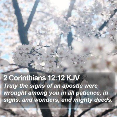 2 Corinthians 12:12 KJV Bible Verse Image