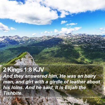 2 Kings 1:8 KJV Bible Verse Image