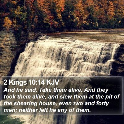 2 Kings 10:14 KJV Bible Verse Image