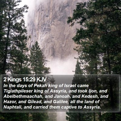 2 Kings 15:29 KJV Bible Verse Image