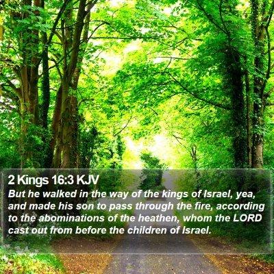 2 Kings 16:3 KJV Bible Verse Image