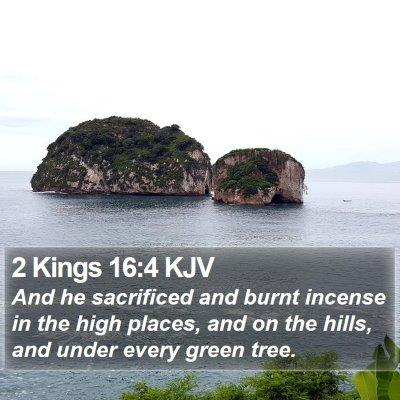 2 Kings 16:4 KJV Bible Verse Image
