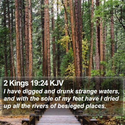 2 Kings 19:24 KJV Bible Verse Image