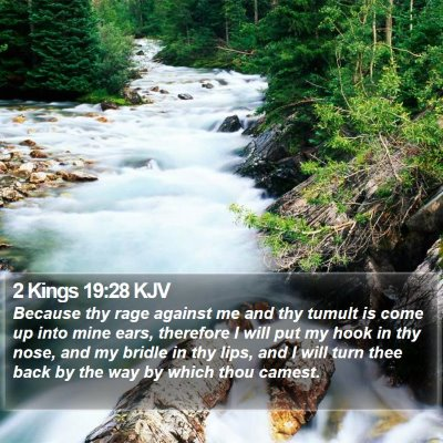 2 Kings 19:28 KJV Bible Verse Image