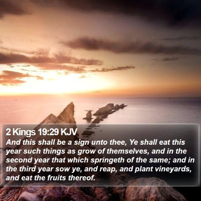 2 Kings 19:29 KJV Bible Verse Image
