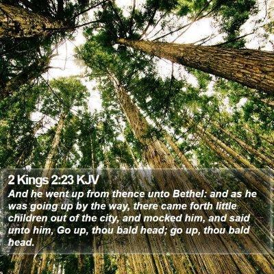 2 Kings 2:23 KJV Bible Verse Image