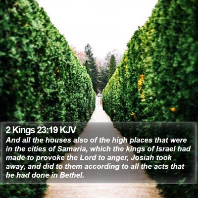 2 Kings 23:19 KJV Bible Verse Image