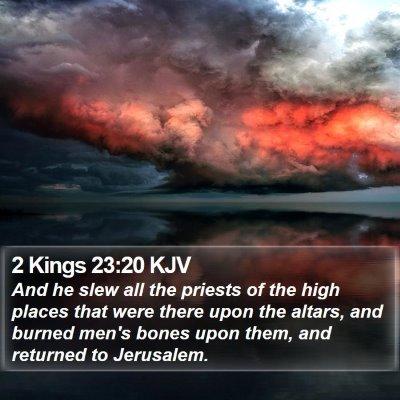 2 Kings 23:20 KJV Bible Verse Image