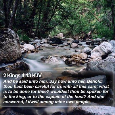 2 Kings 4:13 KJV Bible Verse Image