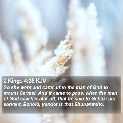 2 Kings 4:25 KJV Bible Verse Image