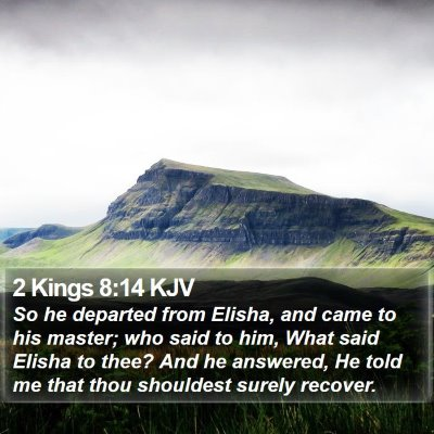 2 Kings 8:14 KJV Bible Verse Image