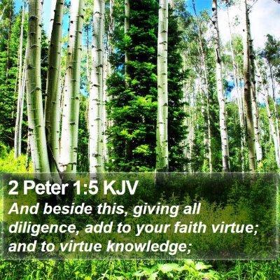 2 Peter 1:5 KJV Bible Verse Image