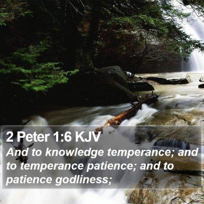 2 Peter 1:6 KJV Bible Verse Image