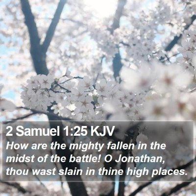 2 Samuel 1:25 KJV Bible Verse Image