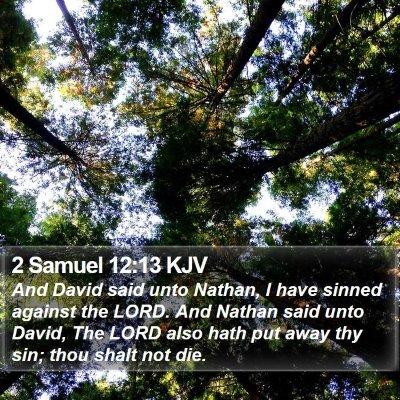 2 Samuel 12:13 KJV Bible Verse Image