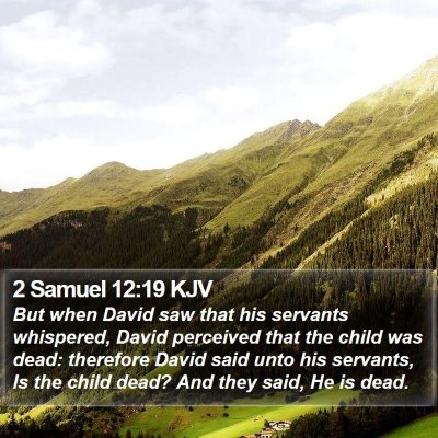 2 Samuel 12:19 KJV Bible Verse Image