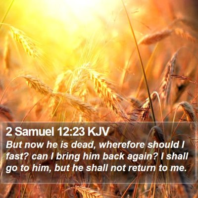 2 Samuel 12:23 KJV Bible Verse Image