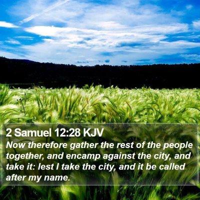 2 Samuel 12:28 KJV Bible Verse Image