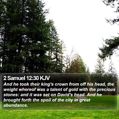 2 Samuel 12:30 KJV Bible Verse Image
