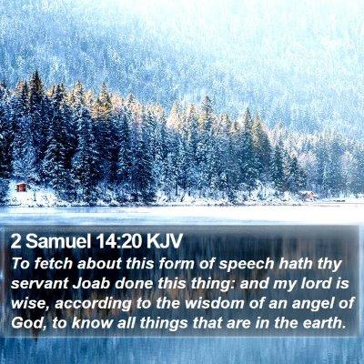 2 Samuel 14:20 KJV Bible Verse Image