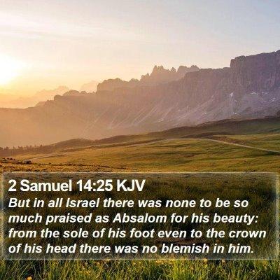 2 Samuel 14:25 KJV Bible Verse Image
